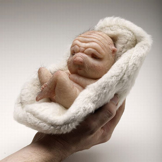 Sculptures_by_Patricia_Piccinini11