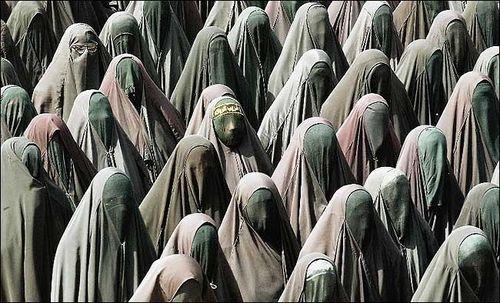 244174_burka_graduation6