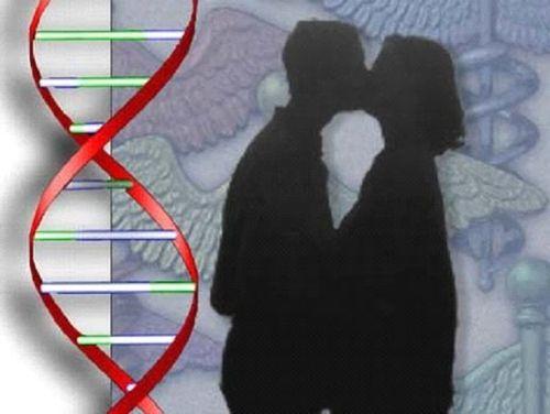 Modif_ ADN 1